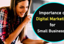 Importance of Digital Marketing for Small Businesses