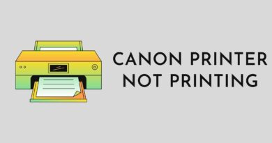 Canon Printer Not Printing Text